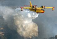 El Comité Estatal de Coordinación de Incendios Forestales hace balance de la campaña 2012