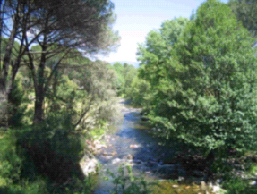 El Consejo Nacional del Agua informa favorablemente los planes hidrológicos del segundo ciclo de diez cuencas de competencia estatal