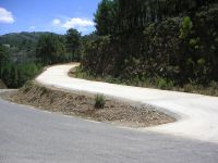 Maintenance and improvement of existing forest roads
