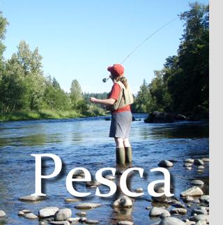 Sección de Pesca